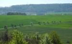 Pohled k Tmani z Koukolovy hory.