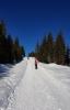 Kontrast sněhu s azurem čistého nebe je dokonalý. Tenhle kousek od Prášilského potoka musíme vyšlapat pěšmo.