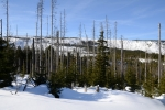Hřeben Skalky jsem si prošel ještě bez sněhové pokrývky v polovině listopadu. I tehdy bylo nádherně.