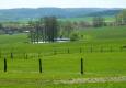 Pastviny nad Habřím.