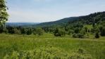 Pohled do údolí Borskěho potoka.