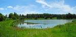 Velký Podvořský rybník.
