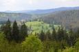 Stoupání k vrcholu Liščí hory poskytne výhled na Pravětínskou Ladu.