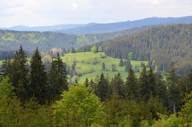 Stoupání k vrcholu Liščí hory poskytne výhled na Pravětínská Lada.
