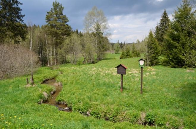 Okolí Zelenohorského potoka chrání PR Pravětínská Lada.
