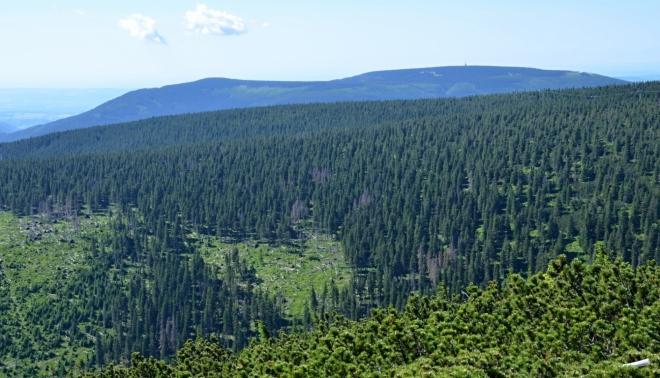 Pohled k Černé hoře.