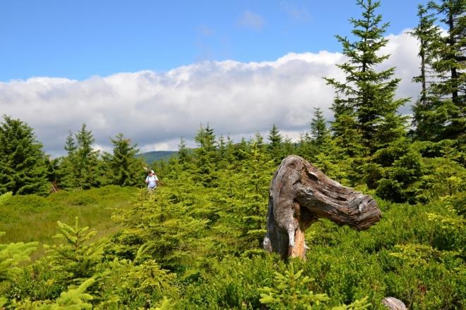 Dinosaurus hlídá krkonošský hřeben.
