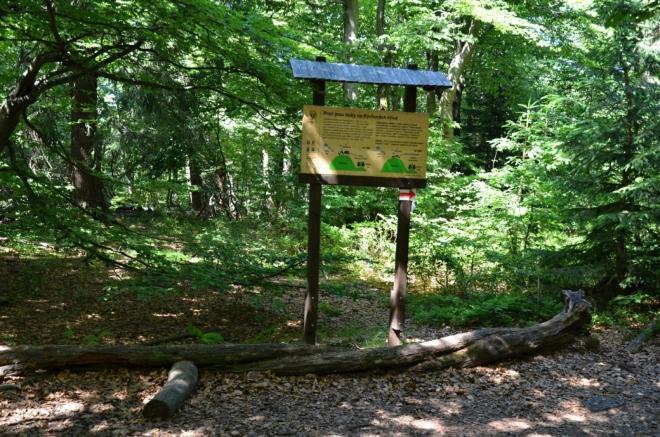 Dvorský les leží v l. zóně NP.
