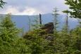 Jezerní hora - severní vrchol. Na nejvyšší skálu vylézt nelze.