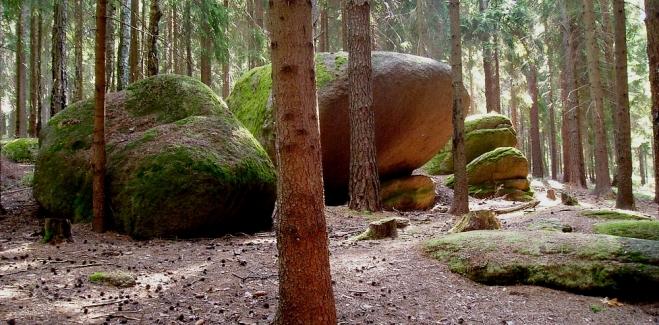Balvany roztroušené v lesích, rybníky s neuvěřitelně ledovou vodou, ale i příjemné cesty osvěžené náprstníky digitalis všech možných barev, to je Česká Kanada, nádherný kout jižních Čech.