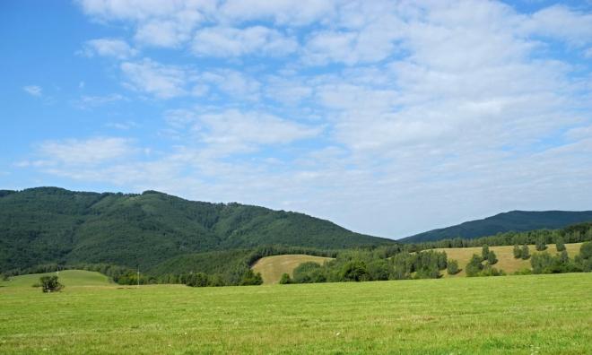 Bukovec uzavírá Runinu od jihozápadu.