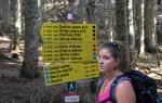 Kristýna nás provází po horách Durmitoru. Opět se mi osvědčila aplikace www.mapy.cz, kde je Durmitor slušně zobrazen i s vyznačenými stezkami.