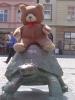 Méďa sedící na želvičce.