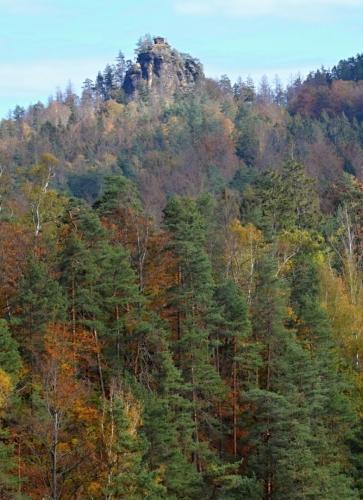 Rudolfův kámen od Purkartické silnice.