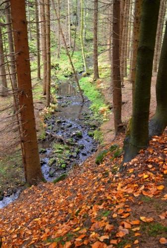 Brtnický potok je přítokem Křinice.