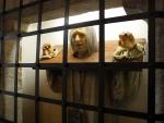 Muzeum tortury...