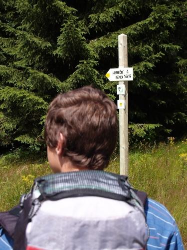 U odbočky k hranici je pusto a prázdno. Kousek dál nový můstek přes potok a značení na zelenou šipku. Ta nás bude provázet celou cestu Bavorským parkem.