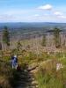 Kolem jsou houfy sladkých borůvek a tak doplňujeme kalorie. Sil ubývá a čas se nachyluje. Původně jsem byl mnohem optimističtější. Po odbočce z hranic jdeme mrtvým lesem vysokou trávou a poté konečně docházíme na značenou cestu od Roklanského jezera. Stoupání 150m se nezdá tak strašný, ale je!