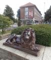 Bronzový lev