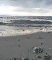 Průliv Kattegat