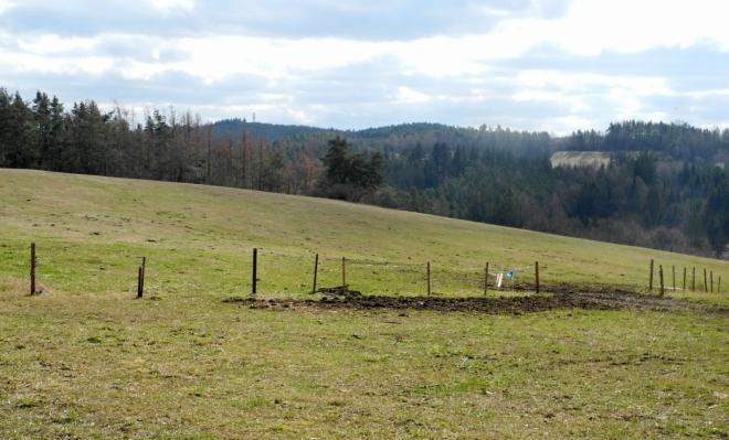 Lesy se střídají s pastvinami docela pravidelně.