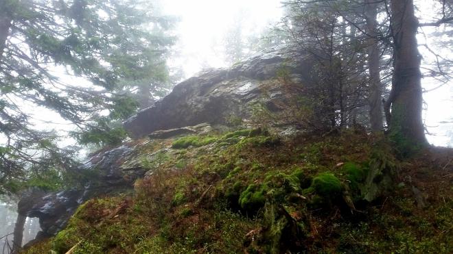 Medvědí hřbet - vrchol.