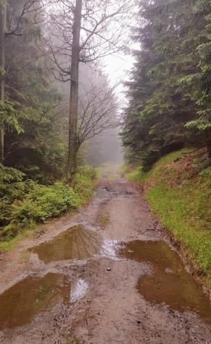 Trasa kolem Klínovce nese stopy trvalého deště. Mám štěstí, že neprší.