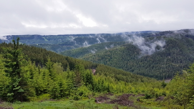 Údolí Klínoveckého potoka.