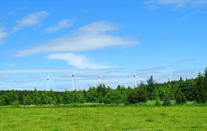 Větrná elektrárna Kryštofovy Hamry.
