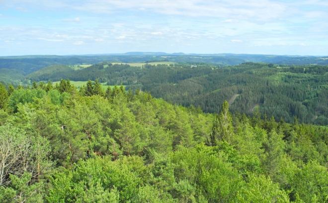 Pohled do zalesněné krajiny Slavkovského lesa.