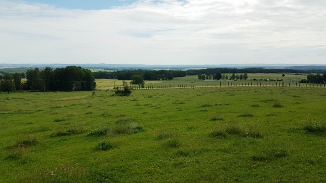 Krajina u Rybníka.