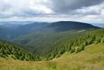 Hluboké údolí Moravy.