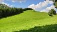 Krejsův kopec u Kunvaldu.