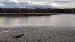 Velký Malovický rybník.