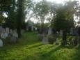 Na židovském hřbitově