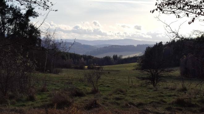 Průhled mezi stromy ukazuje Hamerské Tatry u Hořic na  Šumavě.