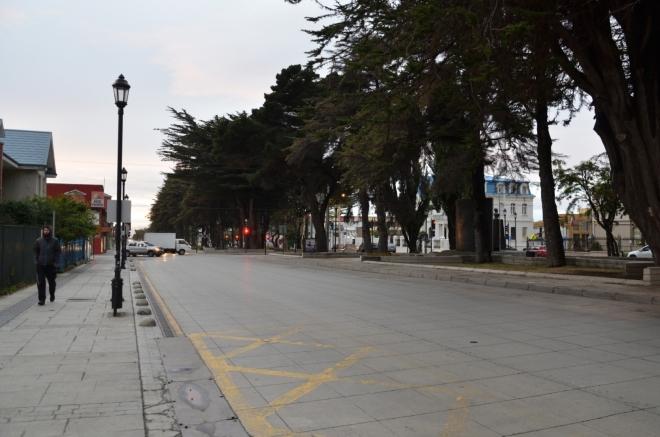 "Ulice Kryštofa Kolumba (Cristobal Colón) a ""brutální stromy"""