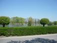 Obecní rybník v Čejeticích