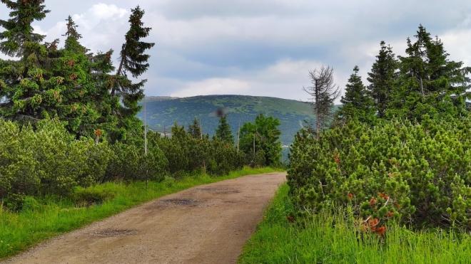 Pohled zpět k Studniční hoře.