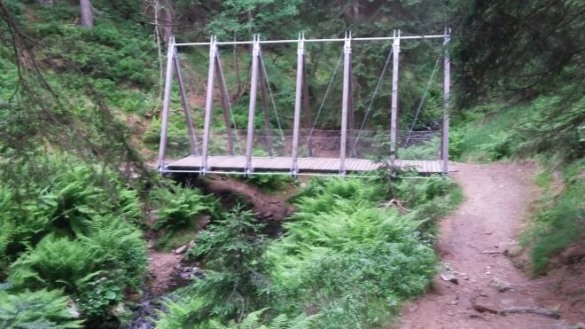 Idin most přes říčku Čistá.