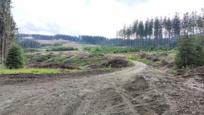 Suchý vrch skrývá přírodní rezervaci.