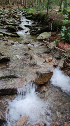 Vody Keprnického potoka...