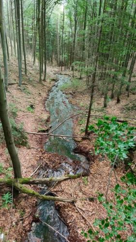 V prudkém srazu deště odhalily kamenné podloží.