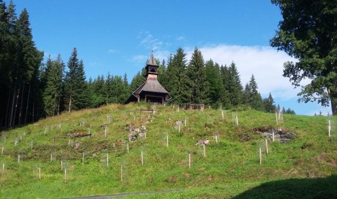 Kaple sv.Hedviky ve Vidlech...