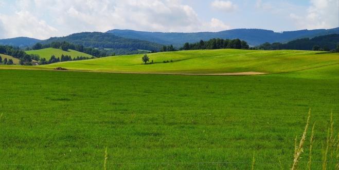 Pohled zpět k Rychlebským horám.
