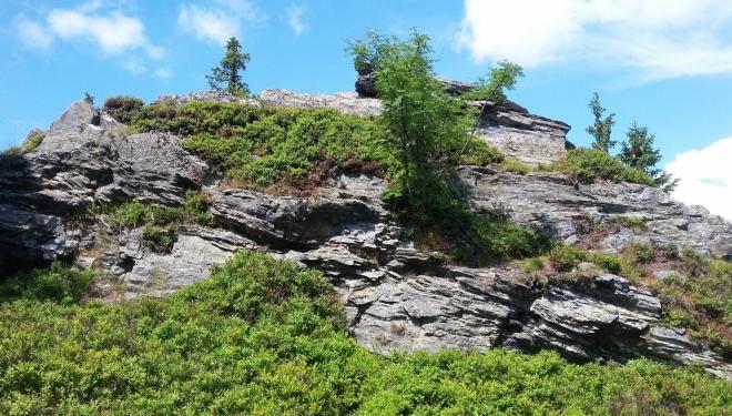 Vrcholové skály na Ostružné (1 184 m n. m.)...