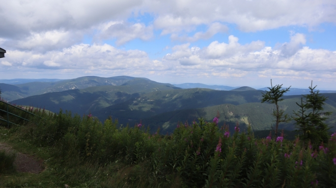 Pohled ke Keprníku.