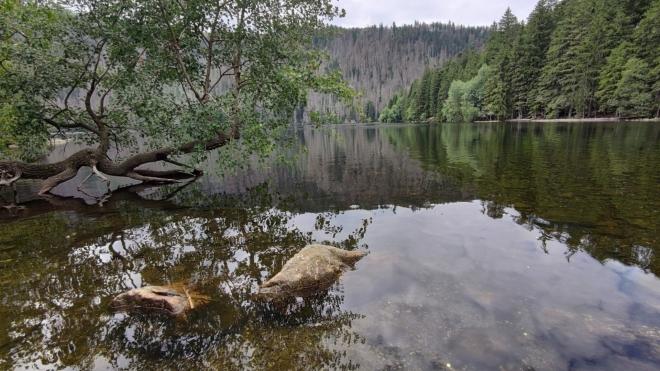 Černé jezero...