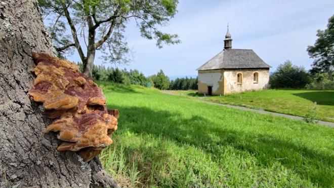 Malý Prenet zdobí kaple sv. Kunhuty.