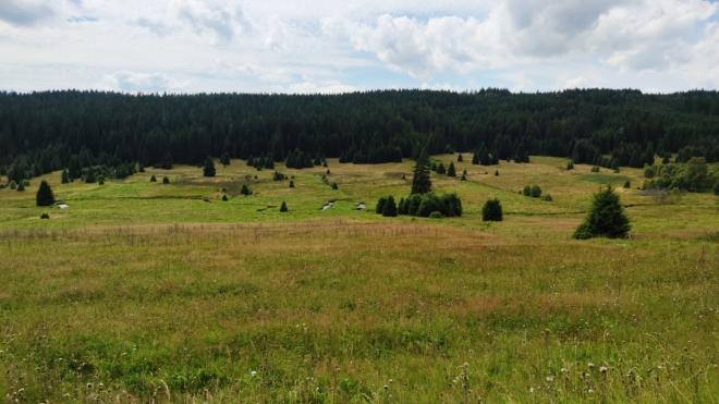 Údolí Křemelné pod Hadím vrchem...